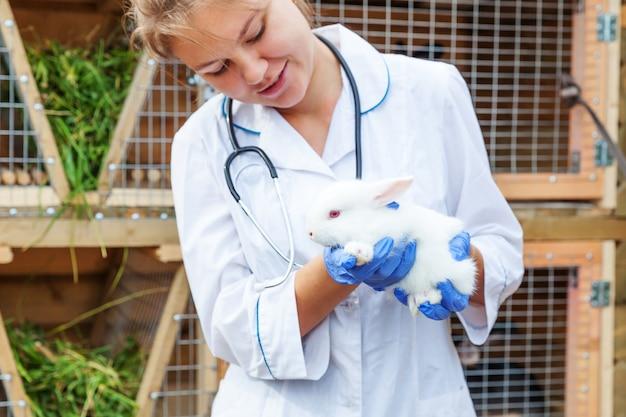 Mulher jovem veterinária feliz com estetoscópio segurando e examinando coelho no rancho