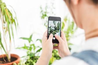 Mulher, levando, fotografia, de, planta potted, ligado, telefone móvel