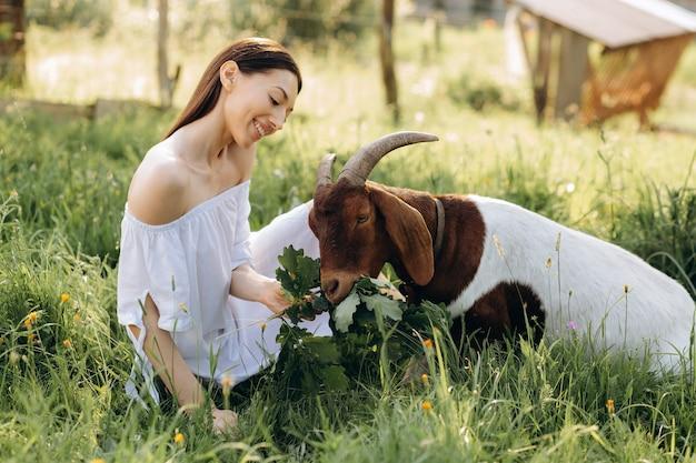 Mulher linda em um vestido branco alimenta cabra em uma fazenda ecológica.