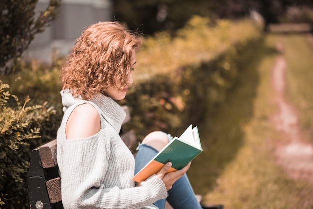 Mulher, livro leitura, parque