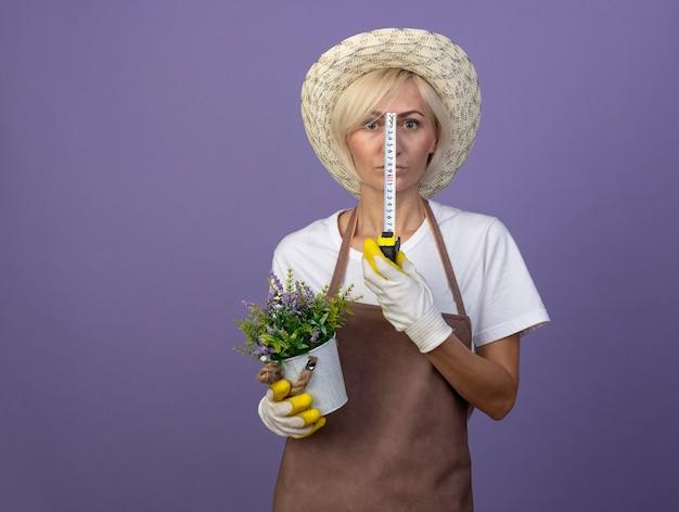 Mulher loira de meia-idade, jardineira, de uniforme, usando chapéu e luvas de jardinagem, segurando o vaso de flores e o medidor de fita adesiva na frente do rosto, isolado na parede roxa com espaço de cópia