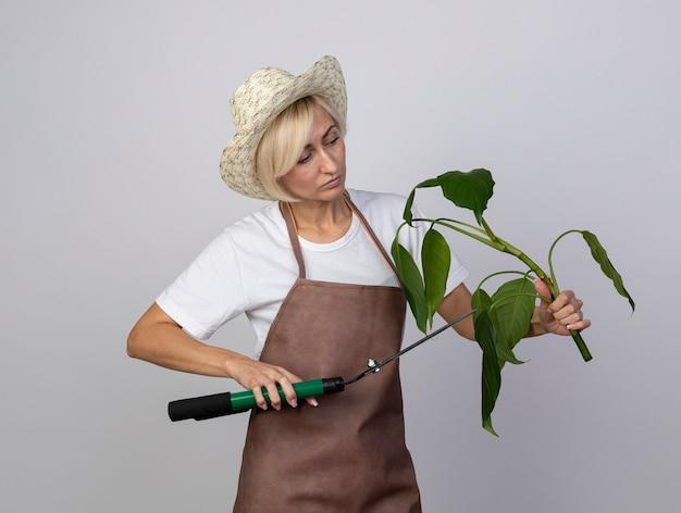 Mulher loira de meia-idade, jardineira, uniformizada, usando chapéu, segurando, olhando para uma planta, cortando-a com tesoura