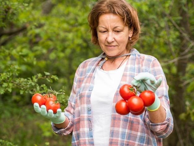 Mulher mais velha, segurando um monte de tomates