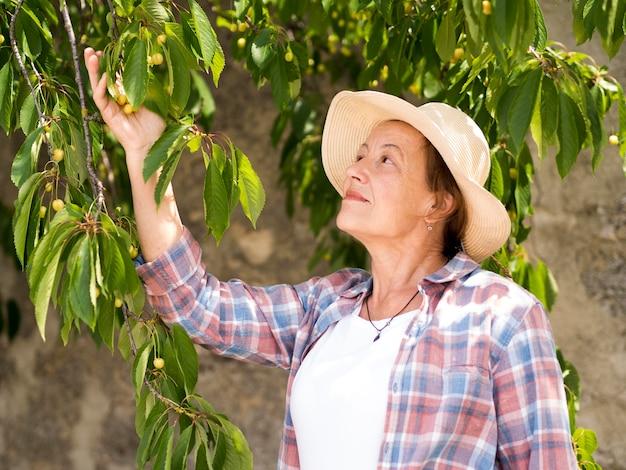 Mulher mais velha, tocando as folhas de uma árvore