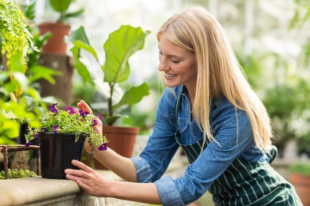 Mulher mantendo planta em vaso no muro de contenção
