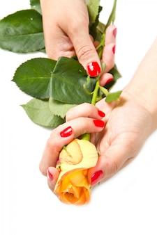 Mulher, mãos, com, vermelho, manicure, e, rosa