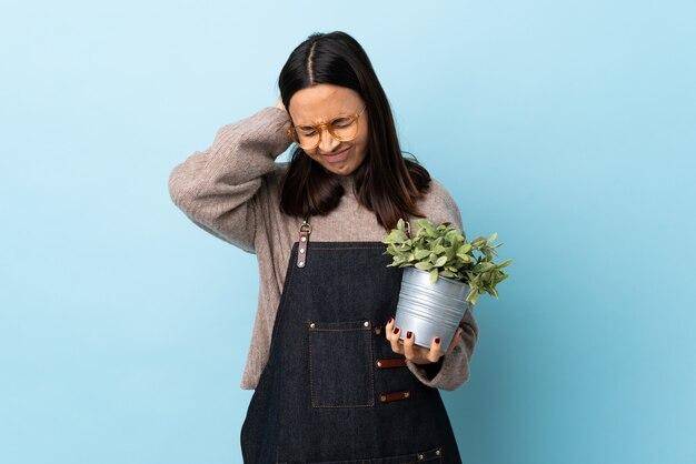 Mulher morena jovem de raça mista, segurando uma planta nas orelhas frustradas e coning azuis isoladas