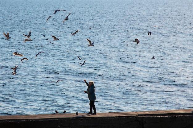 Mulher na praia, alimentando as gaivotas. as gaivotas circundam a silhueta de uma mulher. amanhecer à beira-mar