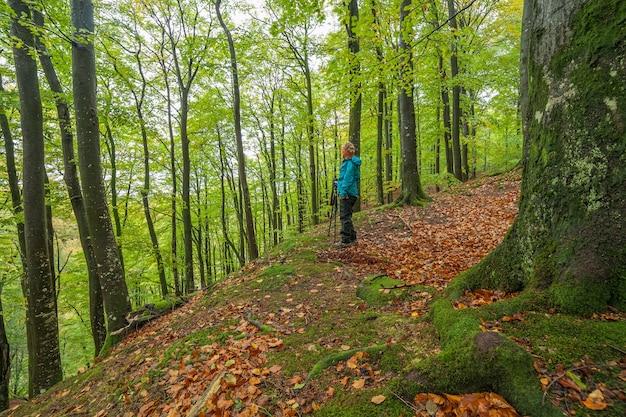 Mulher olhando a vista panorâmica da paisagem montanhosa da folhagem de outono