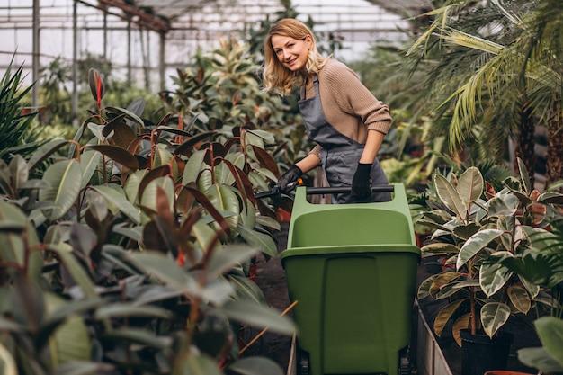 Mulher, olhar, após, plantas, em, um, estufa