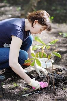 Mulher, plantar, jovem, seedling, (chestnut), foco, ligado, mulher