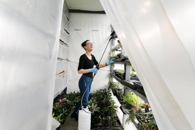Mulher, plantas molhando, em, estufa