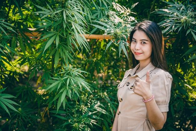 Mulher polegares para cima com árvore de cannabis, sucesso do jovem proprietário de fazenda de planta de maconha na agricultura de plantação de cânhamo.