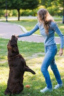 Mulher, pôr, dela, mão, em, dog's, boca