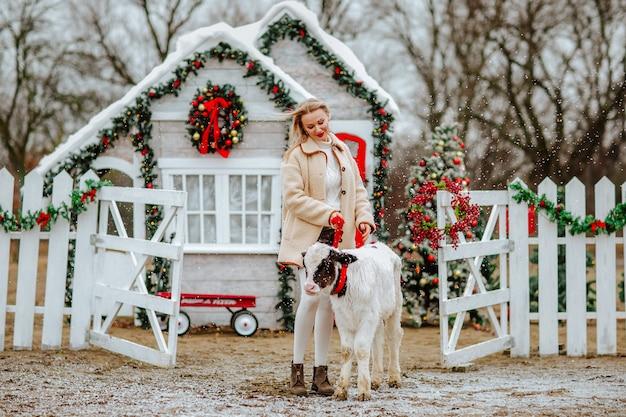 Mulher posando com o jovem touro na fazenda de natal com uma decoração do feriado. nevando