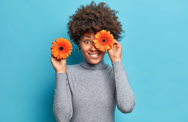 Mulher positiva segura gerberas laranja, cobre poses de olhos com flores favoritas, vestidas com gola olímpica cinza casual isolada sobre a parede azul