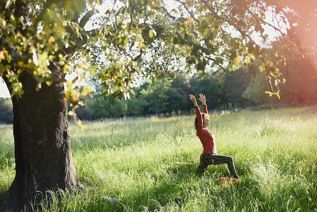 Mulher praticando ioga sob uma grande árvore