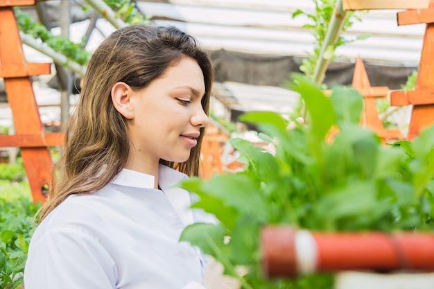 Mulher profissional na fazenda hidropônica. fazenda de foguetes hidropônicos. conceito de vida saudável e tecnologia.
