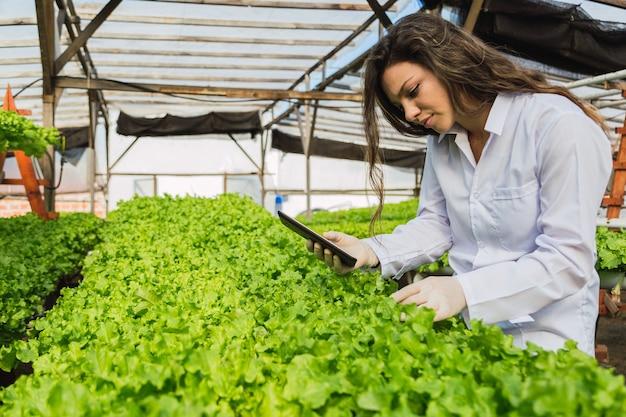 Mulher profissional trabalhando em uma fazenda hidropônica