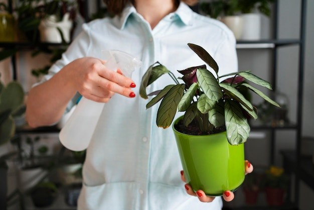 Mulher pulverizando folhas de plantas de perto