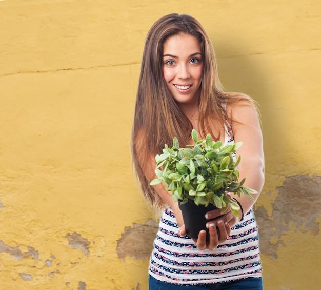 Mulher que prende uma planta com as mãos