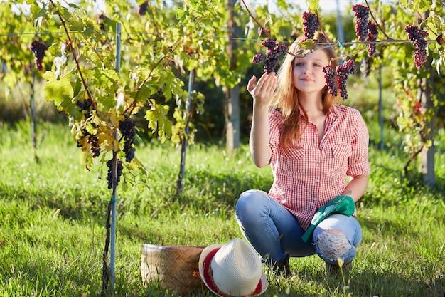 Mulher que trabalha em um vinhedo