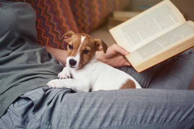 Mulher relaxando no sofá e lendo um livro com o cachorrinho jack russel