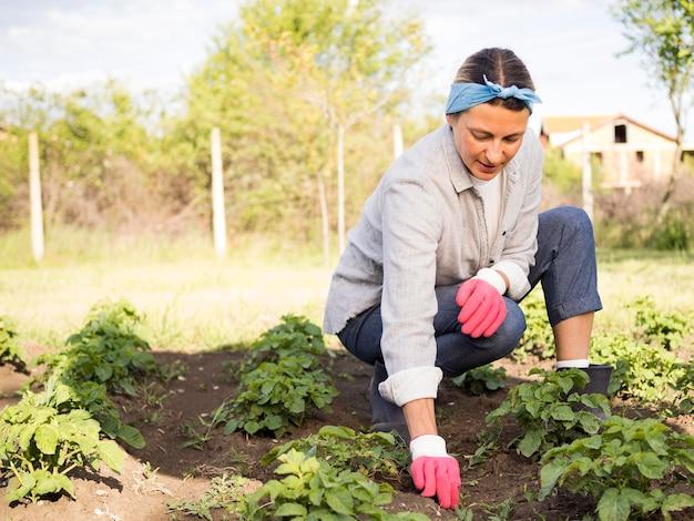 Mulher remota que jardina ao ar livre