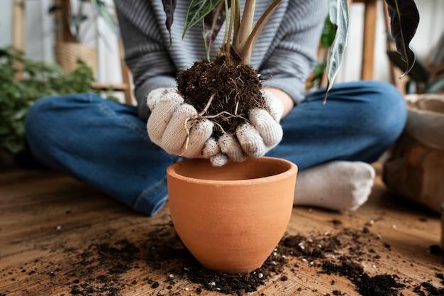 Mulher repotenciando uma planta de casa dentro de sua casa