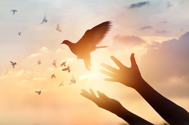Mulher rezando e pássaro livre