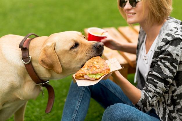 Mulher segura, alimento, para, cão