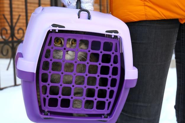 Mulher segurando a caixa de transporte com o gato, close-up