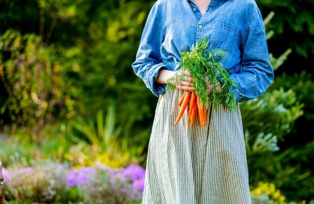 Mulher segurando cenouras frescas em um jardim