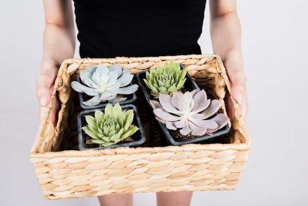 Mulher segurando cesta com plantas e flores