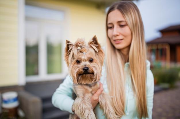 Mulher, segurando, mãos, yorkshire terrier, cão, ao ar livre