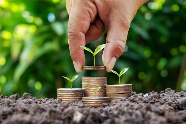 Mulher segurando moeda com árvore na moeda para economizar dinheiro e fundo borrado da natureza verde, conceito de investimento ambiental.
