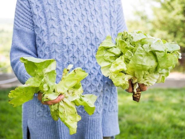Mulher segurando repolho verde fresco