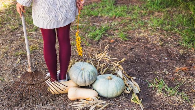 Mulher, segurando, sandthorn, bagas, e, ancinho, perto, legumes