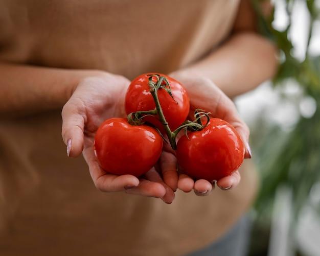 Mulher segurando tomates cultivados em casa