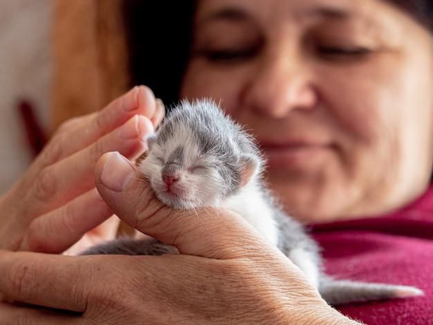 Mulher segurando um pequeno gatinho recém-nascido nas mãos_