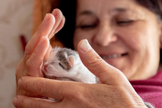 Mulher segurando um pequeno gatinho recém-nascido