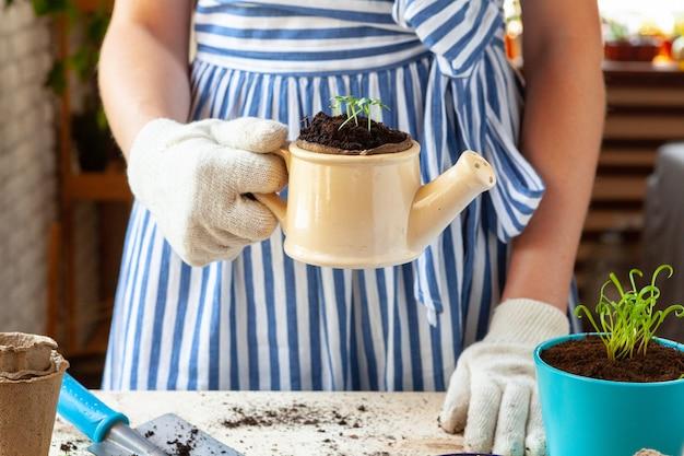 Mulher segurando um pote com um broto nas mãos dela.