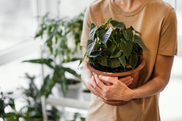 Mulher segurando um vaso de planta interna