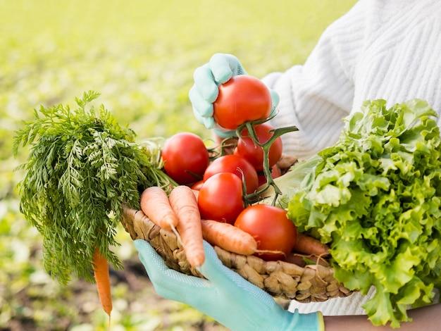 Mulher segurando uma cesta cheia de close-up de legumes