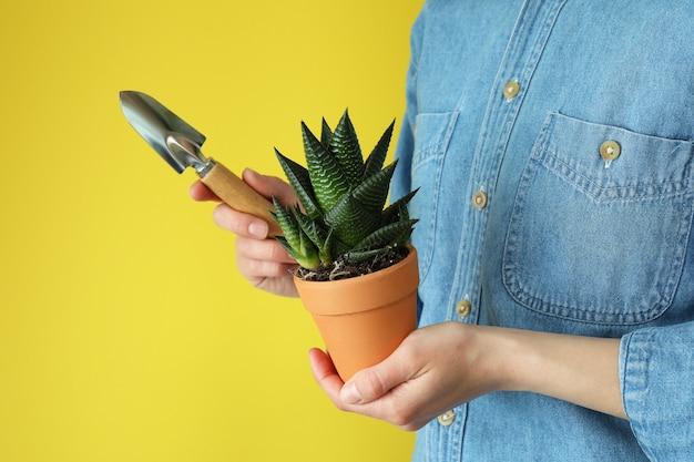 Mulher segurando uma pá de jardim e um vaso com uma planta em fundo amarelo