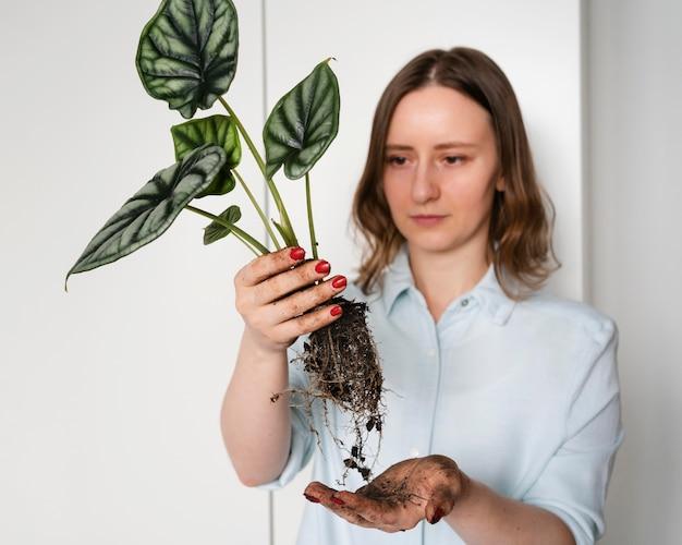 Mulher segurando uma planta com raízes