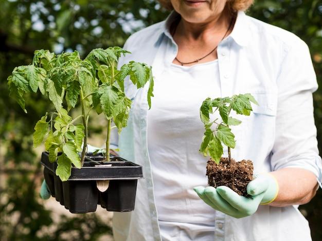 Mulher segurando uma planta e outros vasos com plantas