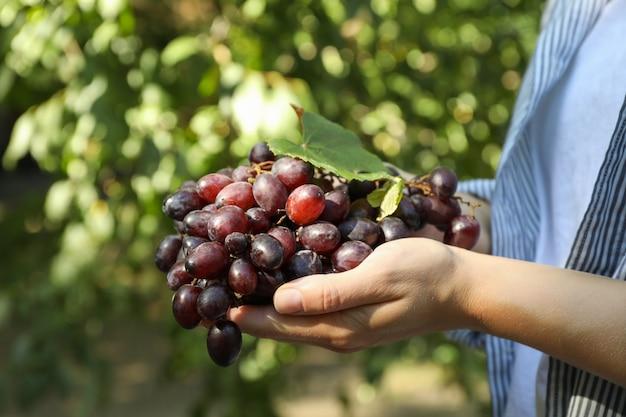 Mulher segurando uva madura fresca com folha ao ar livre