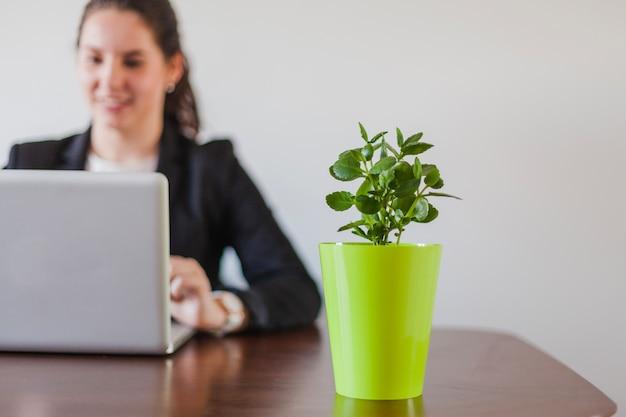 Mulher sentada à mesa trabalhando e plantando