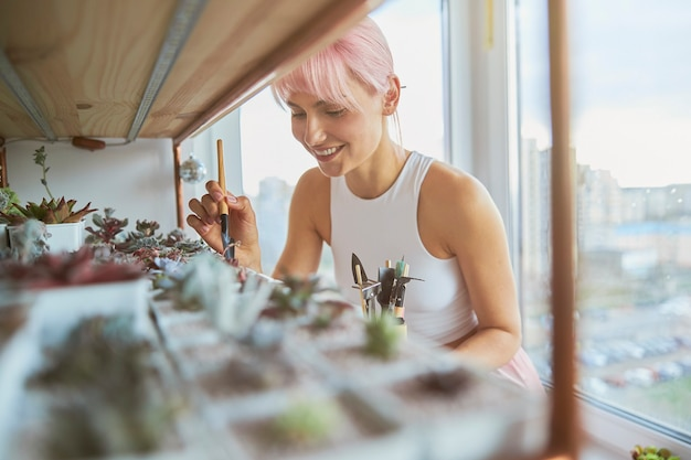 Mulher sorridente com cabelo rosa cuidando de suculentas plantas domésticas em casa